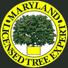 Hunt Valley Maryland Licensed Tree Expert